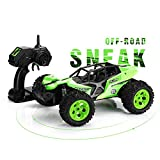 SainSmart Jr. RC Car 1:12 Scale Off-Road Remote Control 2.4GHz 2WD RC Vehicles