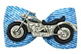 Hot Bows Cruisin' with 2 Latex Bands for Dogs