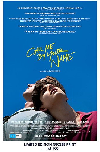 RARE POSTER armee hammer CALL ME BY YOUR NAME timothée chal
