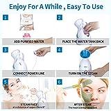 Facial Steamer,VillSure Nano Ionic Face Steamers