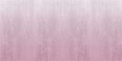 Amazon Com Aofoto 20x10ft Vinyl Pale Pink Gray Background