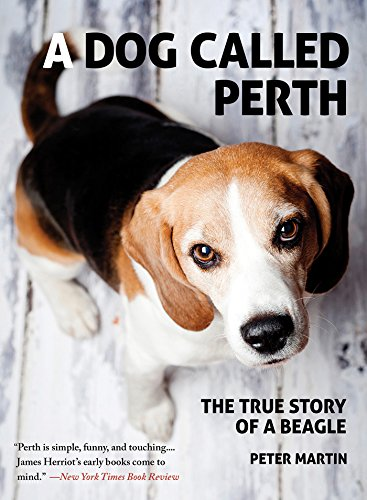 A Dog Called Perth: The True Story of a - Arcade Perth