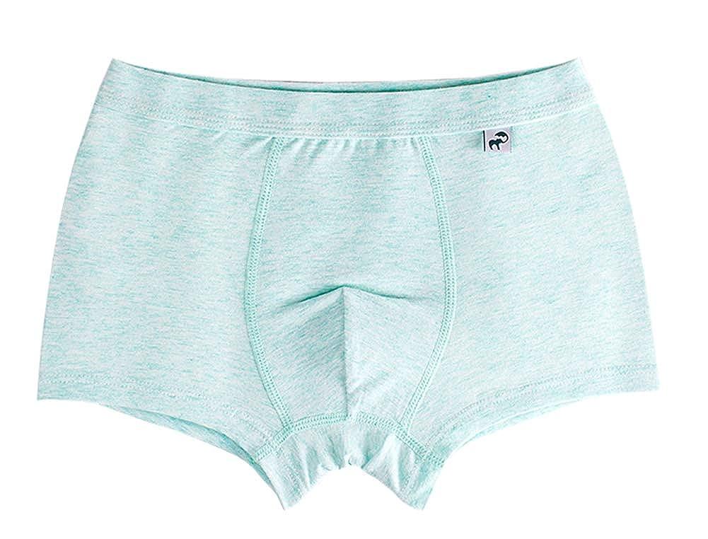 dodoin Little Boys Toddler Soft Cotton Boxer Briefs Underwear 5 Pack 5-7Y