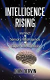 Intelligence Rising, John Dervin, 1450223389