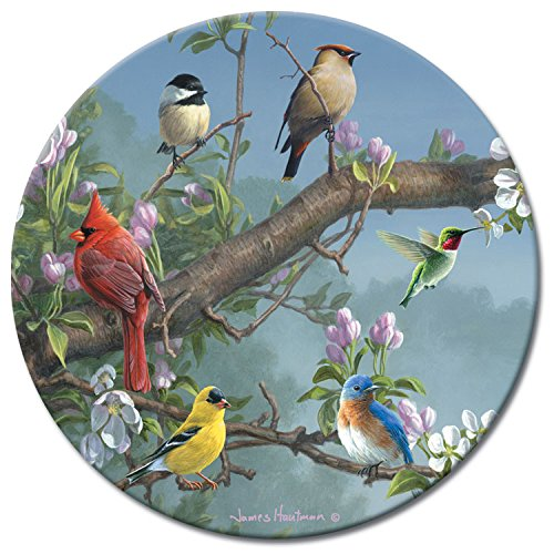 CounterArt Beautiful Songbirds Lazy Susan Glass Serving Plate from Counterart