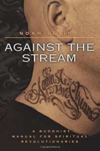 By Noah Levine Against the Stream: A Buddhist Manual for Spiritual Revolutionaries [Paperback]