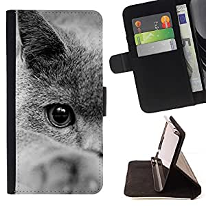 Momo Phone Case / Flip Funda de Cuero Case Cover - British Shorthair siberiano del gato azul; - Huawei Ascend P8 Lite (Not for Normal P8)