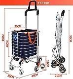 BeebeeRun Folding Shopping Cart Portable Grocery