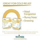BOIRON Coryzalia Cold 30 D, 30 ML