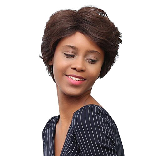 LUNIWEI Short Hair Wig Hairstyle Synthetic Short Hair Wigs For Women (1920 Hairstyles For Long Hair)
