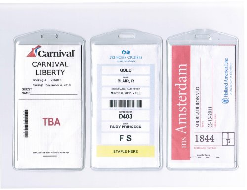 Cruisetags Cruise Ship Luggage Tags 8 Pack Buy Online