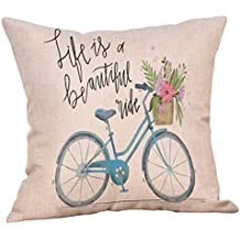 Pillow Cover, Jujunx Happy Valentine's Day Throw Pillow Case Sweet Love Square Bicycle Cushion Cover (B)
