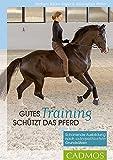 Gutes Training schützt das Pferd: Schonende Ausbildung nach osteopathischen Grundsätzen