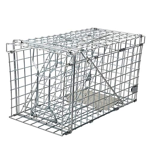Gingbau Heavy Duty Squirrel Trap Collapsible Humane Live Squirrel Cage