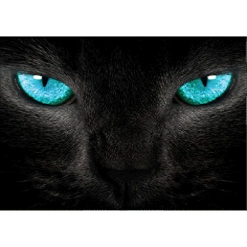 - DIY 5D Diamond Painting by Number Kits, Full Drill Crystal Rhinestone Embroidery Pictures Arts Craft for Home Wall Decor Gift,Green-Eyed Black Cat