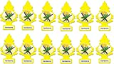 12 Pack Car Freshner 10105 Little Trees Air Freshener Vanillaroma Scent - Single