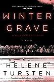 Winter Grave (An Embla Nyström Investigation)