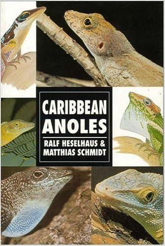 Book Caribbean Anoles (Herpetology series)