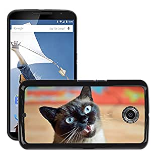 Super Stella Slim PC Hard Case Cover Skin Armor Shell Protection // M00147774 Cat Cute Blue Eye Pet Mieze Sweet // LG Google Nexus 6