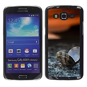 YiPhone /// Prima de resorte delgada de la cubierta del caso de Shell Armor - Playa almeja Seashell - Samsung Galaxy Grand 2