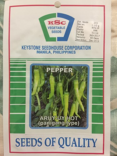 Keystone Peppers Seed (Aruy-uy HOT Long Green Pepper Seeds Panigang Philippine Vegetable KSC Manila)