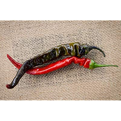 Sherwoods Seeds Black Thai Heirloom Chili Pepper Premium Seed Packet + More : Garden & Outdoor