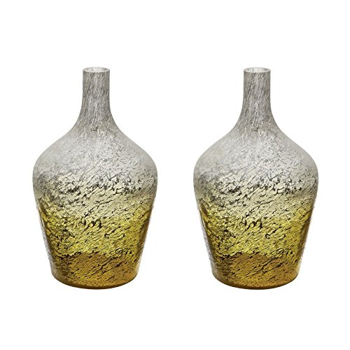 Dimond Home Lemon Ombre Bottle (Set of 2) (876031/S2) by Dimond Home
