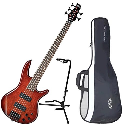 Ibanez GSR205SMCNB 5-String Electric Bass Charcoal Brown Spalted Maple Top w/ Gig Bag and Stand by Ibanez