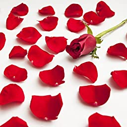 Farm Fresh Natural Red Rose Petals - 5000 petals