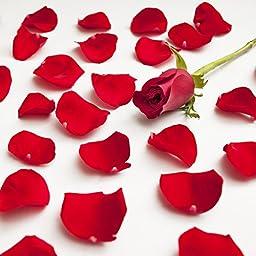Farm Fresh Natural Red Rose Petals - 3000 petals