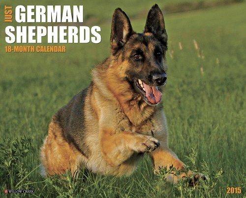 Just German Shepherds 2015 Wall Calendar