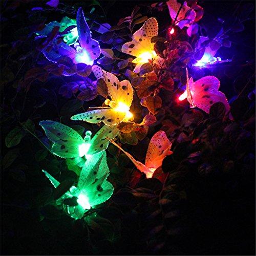 SROCKER Solar Powered String Lights 4.9 Meters 20 LEDs Multi Color Fiber (Fiber Butterfly Light String)