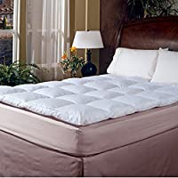Blue Ridge Home Fashion Classic 233 Thread Count Cotton Featherbed, Queen