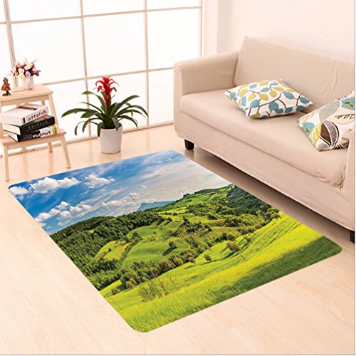 Nalahome Custom carpet Room Decorations Tuscany Italy Sunlight Homestead Plantation Farms Pathway Greenery Picture area rugs for Living Dining Room Bedroom Hallway Office Carpet (22