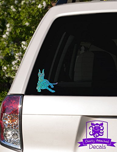 Overly Attached Decals Doberman pinscher lying down Specialty Vinyl Car Decal - 4