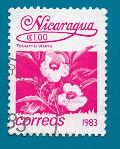 (Nicaragua Postage Stamp - Local Flowers 1983 - Scott)