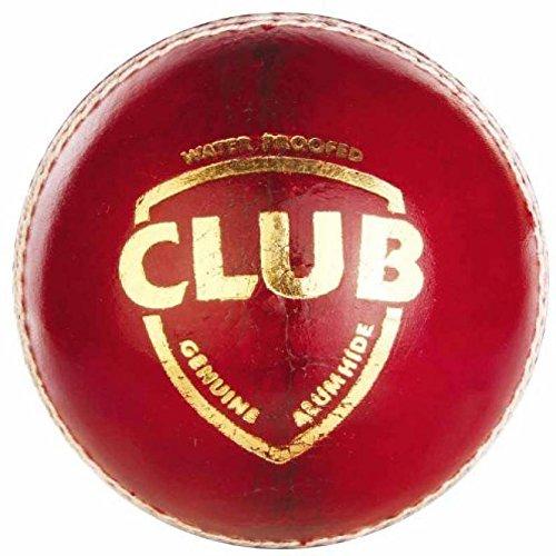 SG Cricket Kit Nexus Plus Bat Club Ball Ezeepak Cricket Kit Bag With