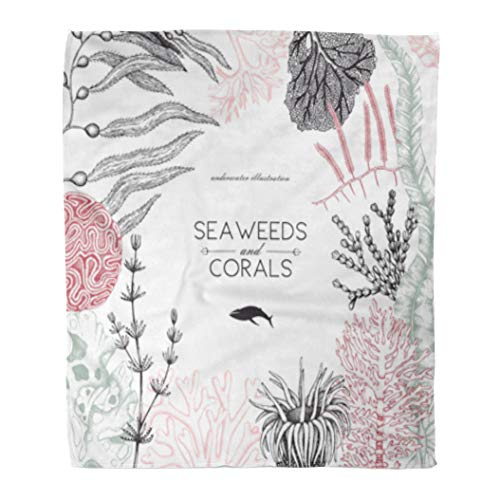 Golee Throw Blanket Brown Sea Corals Fish Stars Sketch Vintage Underwater Natural Sealife 50x60 Inches Warm Fuzzy Soft Blanket for Bed Sofa (Star Coral Polyp)