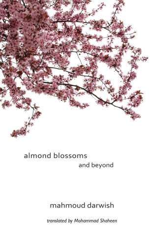 Almond Blossoms and Beyond by Interlink Pub Group