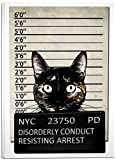 Cortesi Home ''Kitty Mugshot'' by Nicklas Gustafsson Giclee Canvas Wall Art, 40 by 60-Inch