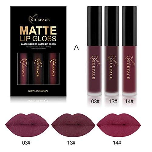 Waterproof Matte Liquid,Datework 3PCS New Fashion Lipstick Cosmetic Sexy Lip Gloss Kit (A) (New Black Lip)
