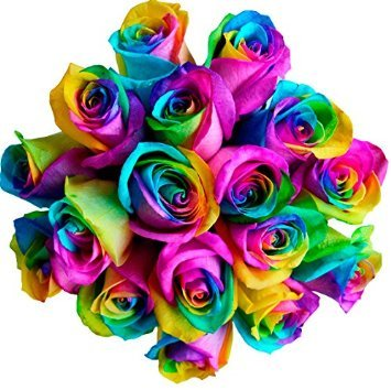 125 Real Fresh Rainbow Rose | Exotic and amazing by FarmDirect
