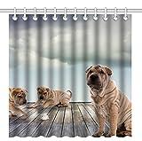 Wknoon 72 x 72 Inch Shower Curtain,Sweet Pets Animal Shar Pei Dogs,Waterproof Polyester Fabric Decorative Bathroom Bath Curtains