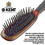 Kent KB Headhog Travel Detangling Hair