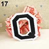 Cloth Letter A-Z Embroidered Motif Applique Iron On Patch Sew Clothing DIY Sticker - Q Ameesi