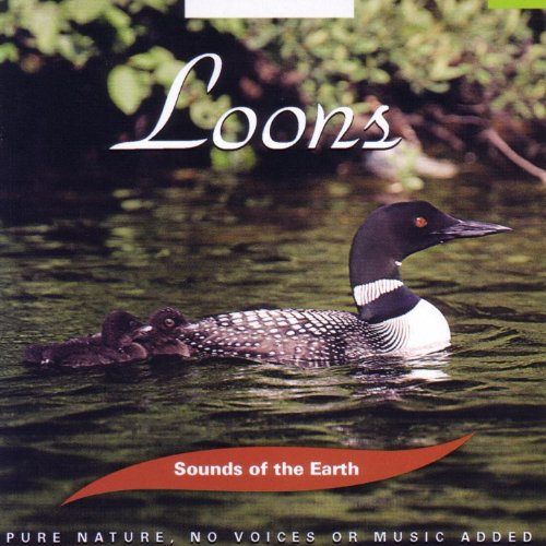 Amazon.com: Loons: Sounds Of The Earth: MP3 Downloads