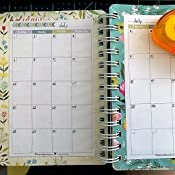 Amazon.com: Katie Daisy 2019 - 2020 On-the-Go Weekly Planner ...