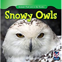 Snowy Owls (Animals That Live in the Tundra)