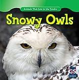 Snowy Owls, Roman Patrick, 1433939096