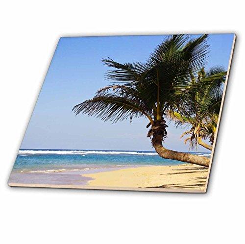 Palm Trees Tile - 5